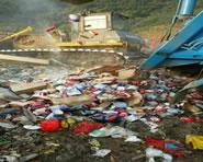 过期食品回收